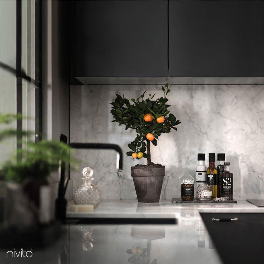 Svart kök vatten kran
